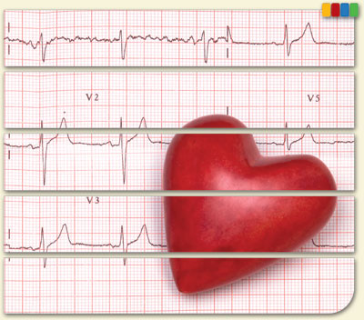 Module 13—Heart Health and Blood Pressure